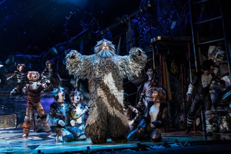 Brandon Michael Nase as 'Old Deuteronomy' and the North American Tour Company of CATS. Photo by Matthew Murphy. 2019